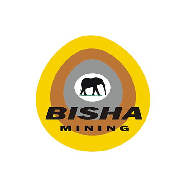 Bisha Mining - Cubility